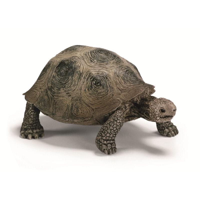 Figura-de-Tortuga-gigante