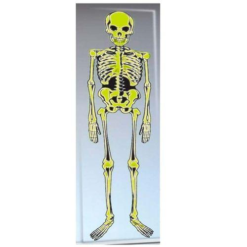 Esqueleto de Decoración