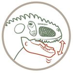 Figura-de-Giganotosaurus-Naranja_1