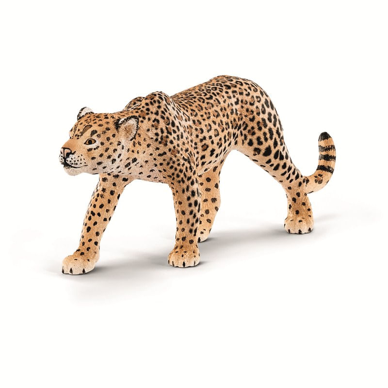 Figura-de-Leopardo