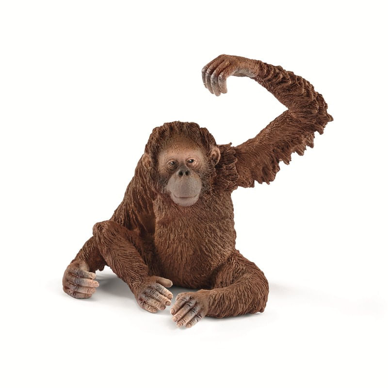 Figura-de-Orangutan-Hembra