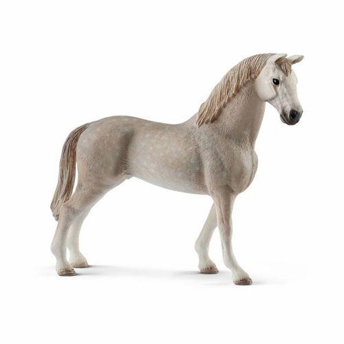 Figura Capón Holsteiner