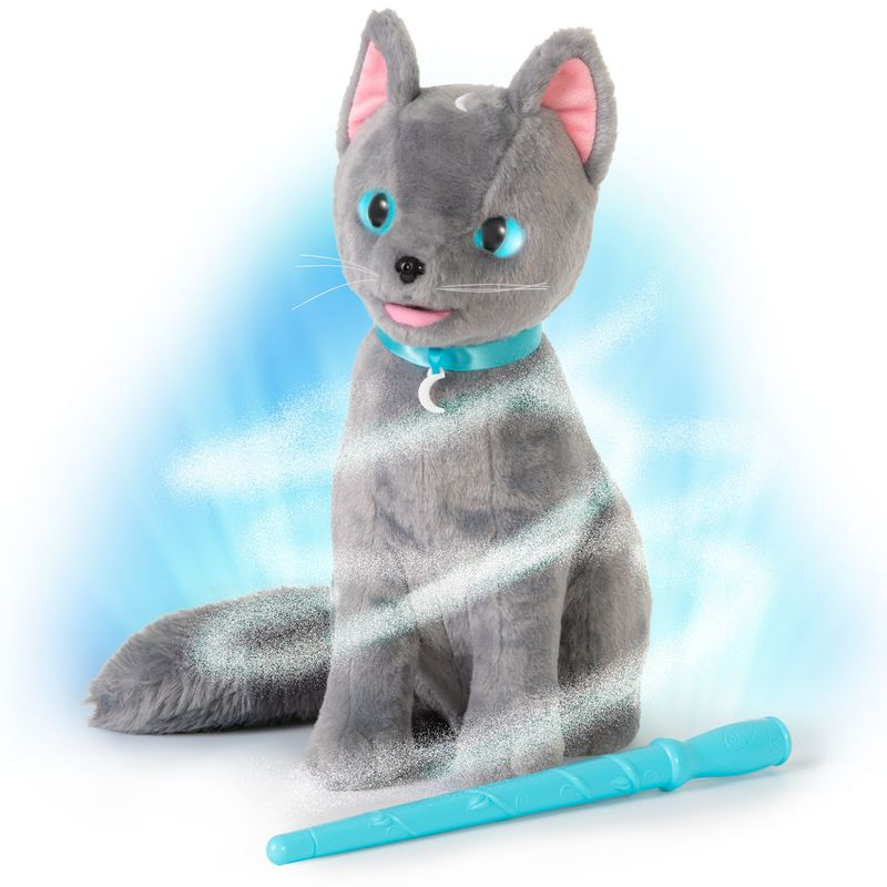 Gato-Mistery-Mao